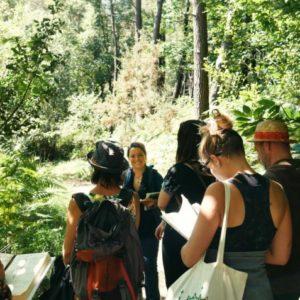 Sortie les vertus de la forêt – Forêt de Lanvaux